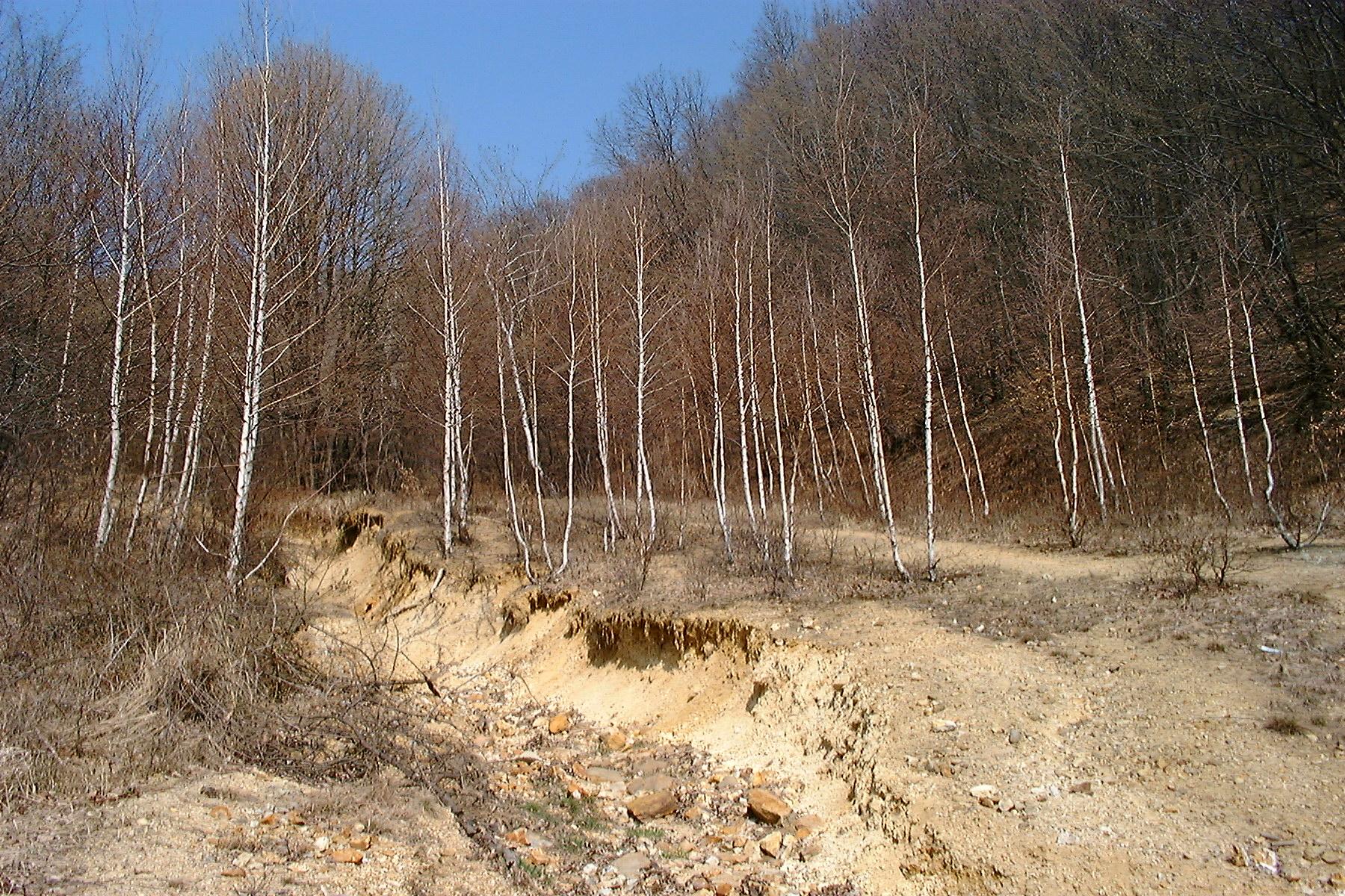 Bányászati hulladékok a Toka-patak völgyében