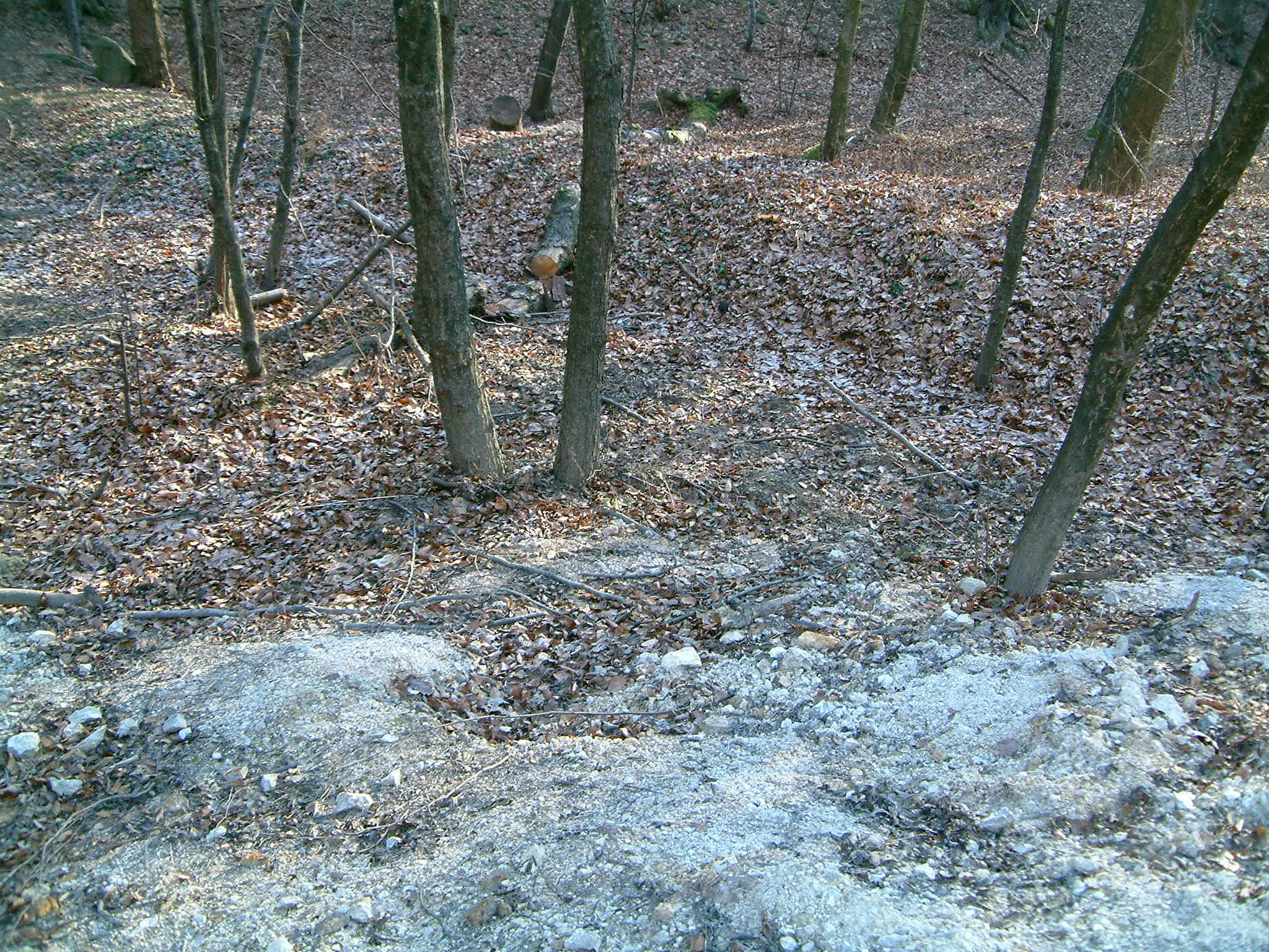 Bányászati eredetű diffúz szennyezettség Új Károly táró környékén