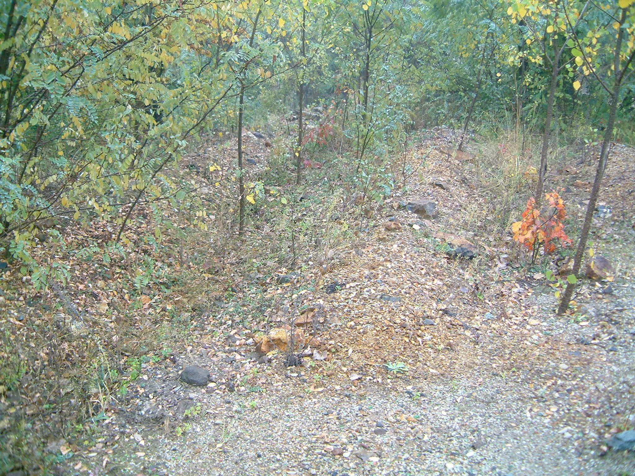 Diffúz szennyezettség a Gyöngyösoroszi bánya ércszállítási útvonalán