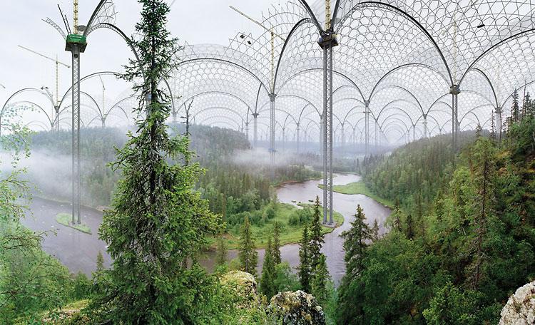 Ökoszisztémák
