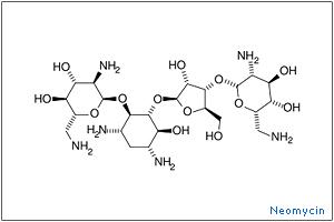 http://www.onlinepharmacycatalog.com/drugs-medications/antibiotics/neomycin/neom