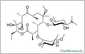 http://www.onlinepharmacycatalog.com/drugs-medications/antibiotics/clarithromyci